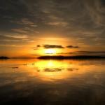 Lough Erne Sunset Birds